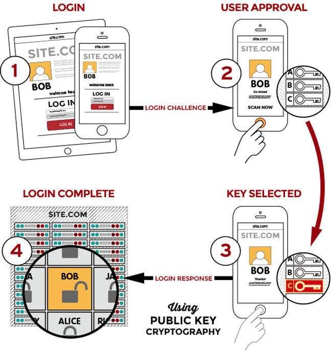 FIDO secure login - حسگرهای اثر انگشت چگونه کار میکنند؟